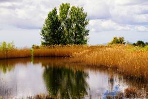 Valdonica-Lake